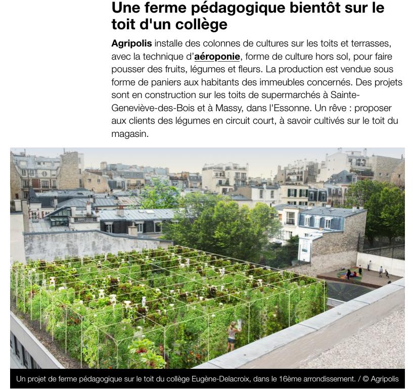 Article sur l'agriculture urbaine à Paris
