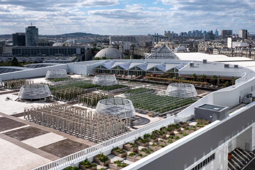 Communiqué : la plus grande ferme urbaine d'Europe en toiture a réalisé sa 1e saison